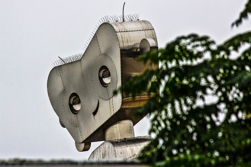 140912, Roboto (2) LPF-116.jpg