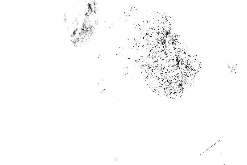 DSC05873.png