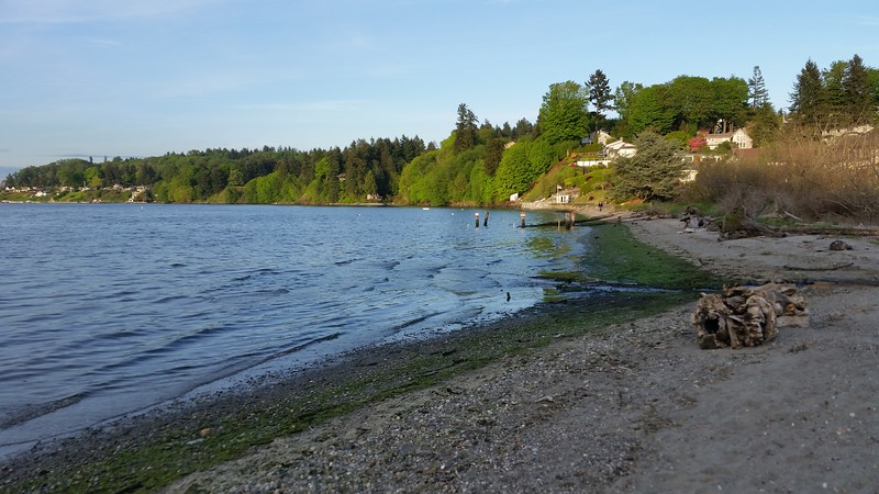 Dash Point State Park, May 9, 2017
