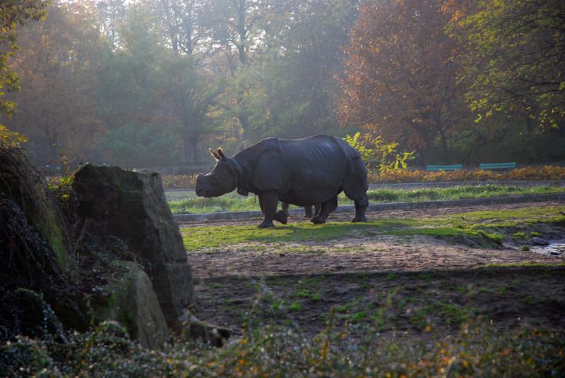 Tierpark Friedrichsfelde / Berlin - November 2011