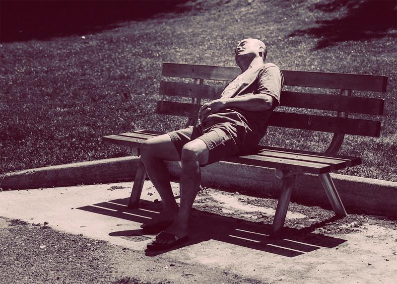 Zen in his sleep
