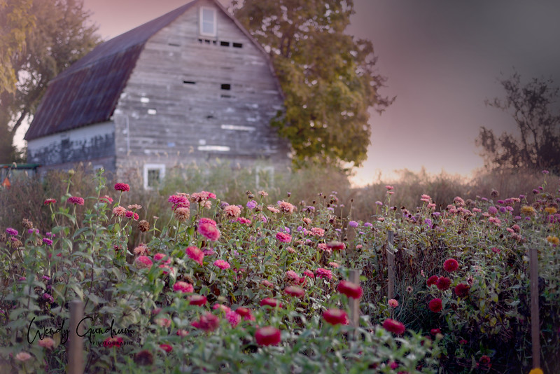 Flowery Barn 1.jpg