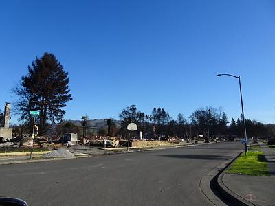 Santa Rosa Fire January 2015