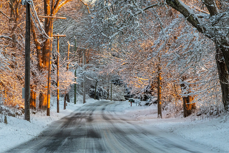 Feb Snow-19.jpg