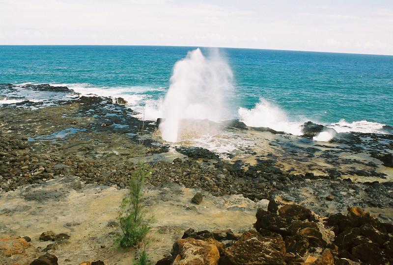 Hawaii-550.jpg