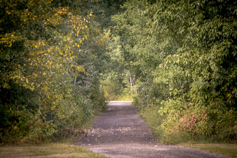 Sylvan Lake Trails.JPG