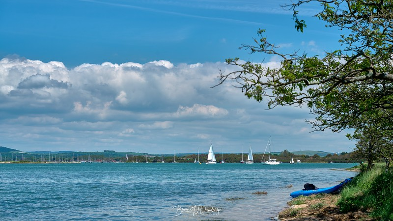 Chichester Harbour-8340 - 12-57 pm.jpg