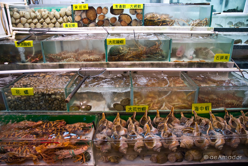 aeamador©-HK08_DSC0087. Kowloon  ( ) Pick your delicacy and have it served quickly.