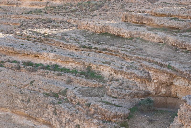 tunisia 20080497.JPG