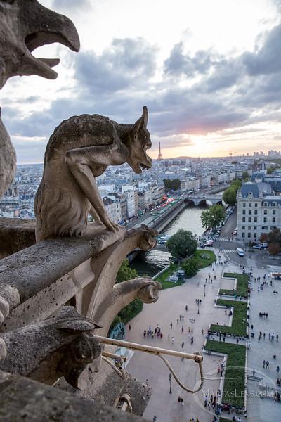 Notre Dame, Paris-33.jpg