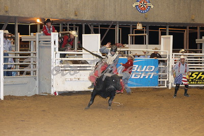 Bull Riding Wednesday