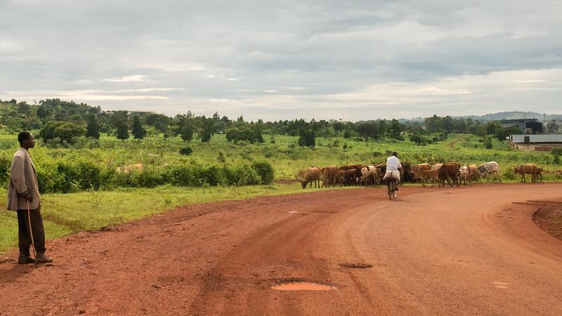 Jinja-Uganda-3.jpg