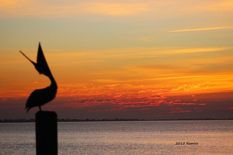 SPI Sunset 1-16-15 505.jpg