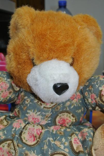 Bear 'Indira' 02.JPG