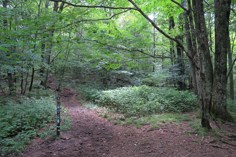 Appalachian Trail - Deep Gap Trailhead