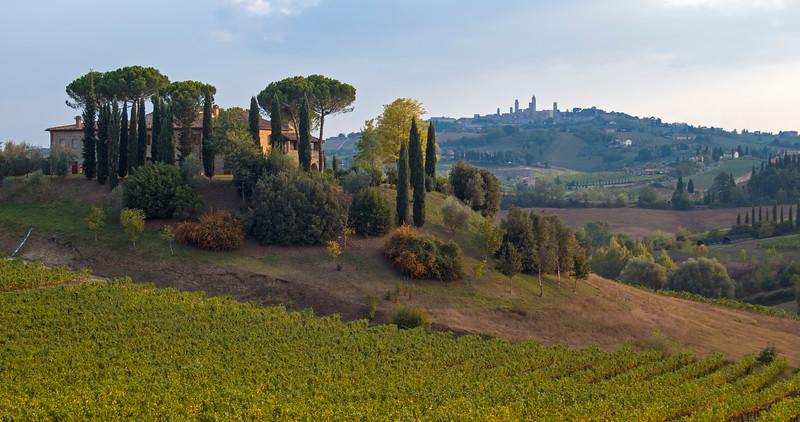 Landscape with Vineyard and Agritourism Farm near San Gimignano in Tuscany (Toscana), Italy