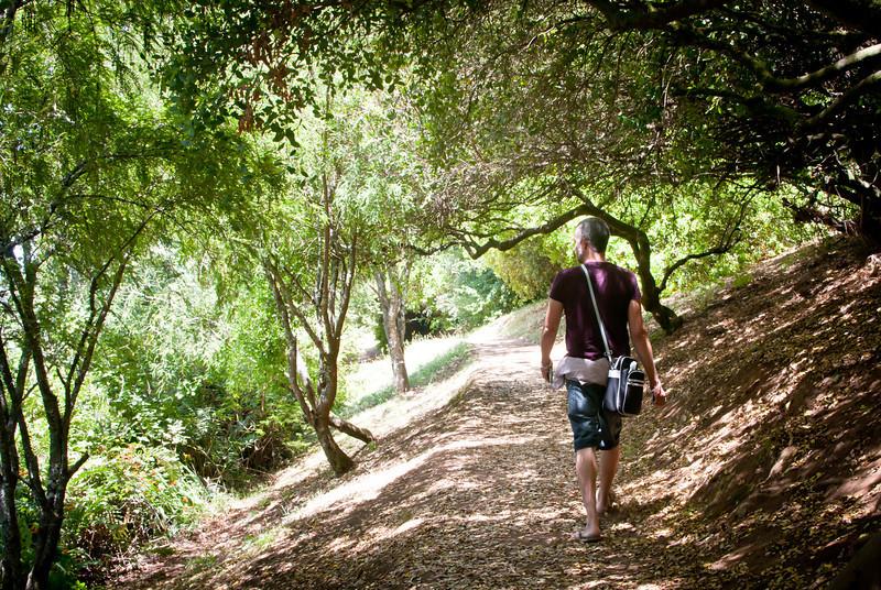 Valdivia 201201 Jardin Botanico (31).jpg