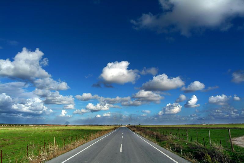 Road through Donana marshland area, province of Seville, Spain