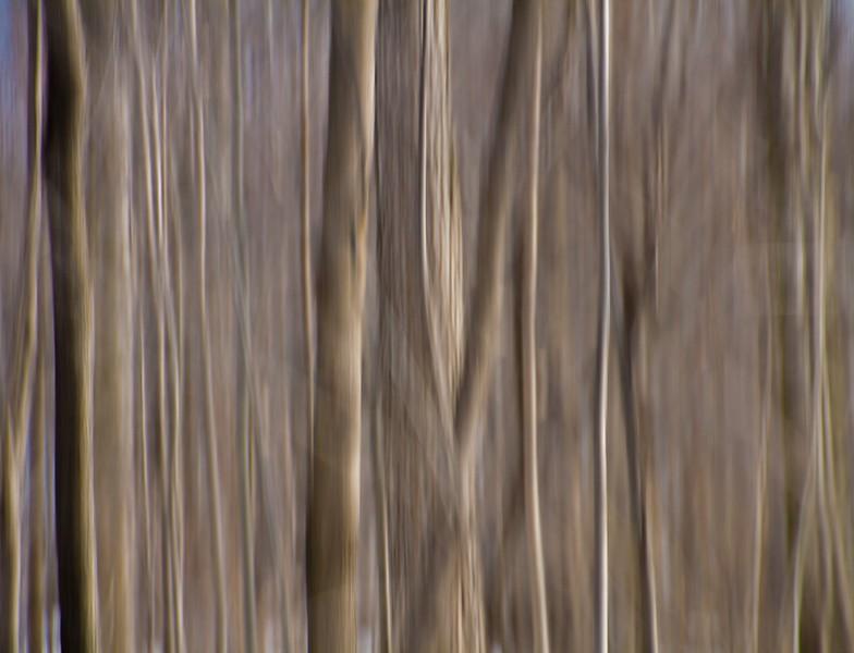 untitled shoot-5575.jpg