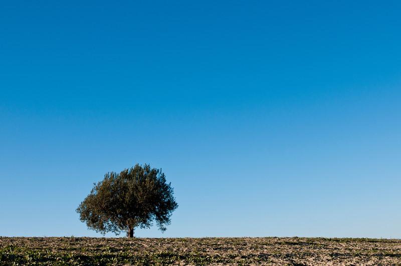 Mineo, Sicily, Italy
