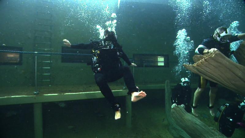 Underwater Walk Edit 45secs.00_00_25_05.Still031.jpg