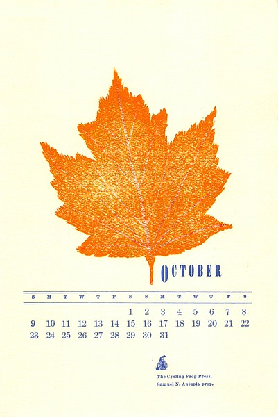 October, 1983, Cycling Frog