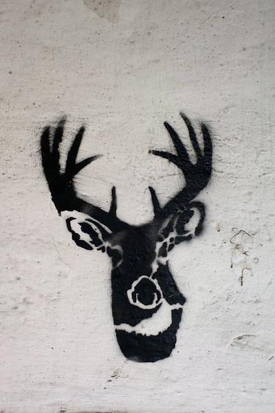 Oh Deer, Poznan, Poland