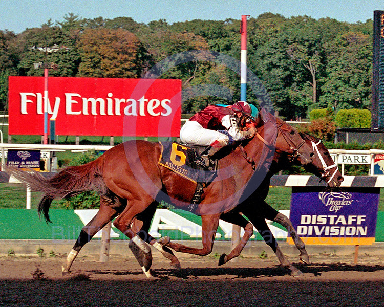 Fleet Indian (inside) would not let Balletto by enroute to hard fought victory in the 2006 Beldame Stakes at Belmont Park.  This victory kept the New York Bred's perfect record in tact.