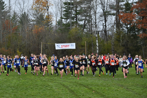 Vermont HS XC Championships at Thetford Academy By Year