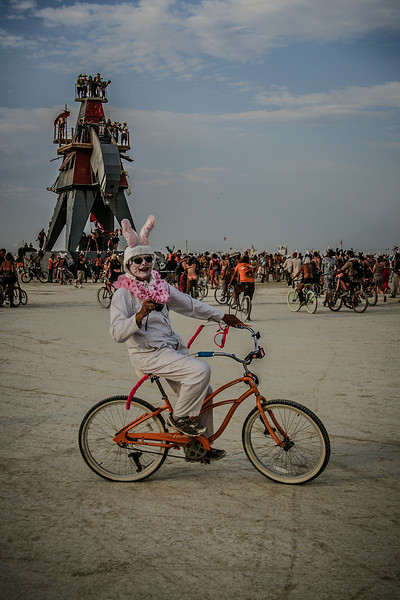 Burning Man 2014-7136.jpg