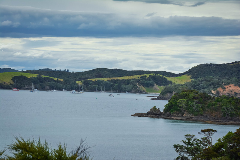 Bay-Of-Islands-46.jpg