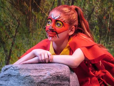 AHS Mulan