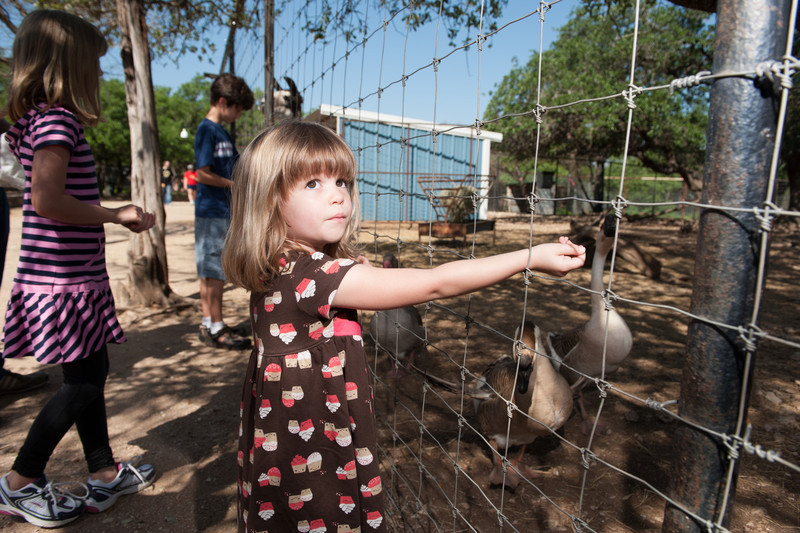 Austin_Zoo-5368.jpg
