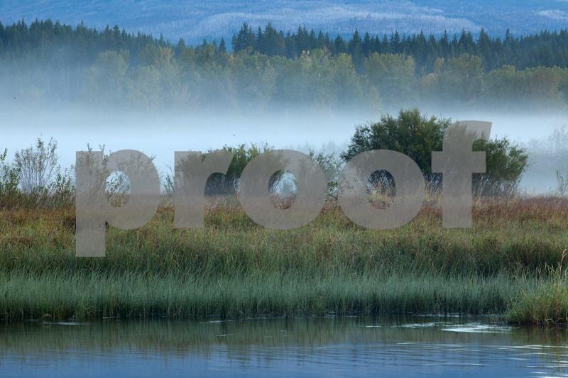 Trout Lake mist sunrise 5147.jpg