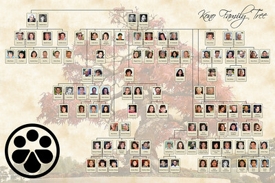 Kono Family Tree