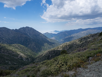 Pine View Ridge & Wild View Peak - San Gabriels 5.29.16