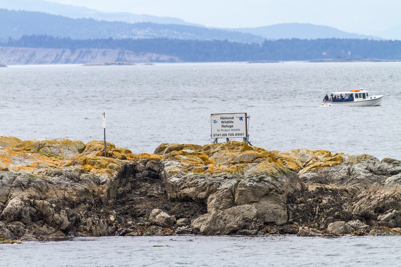 A whale watching boat passes in front of a National Wildlife Refuge on San Juan Island - USA - Washington