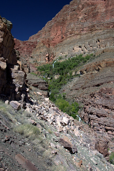 Colorado River Grand Canyon Lees Ferry Diamond Creek