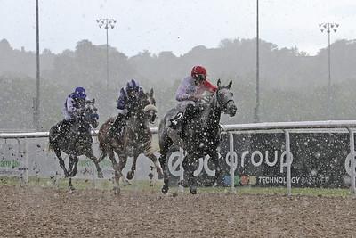 5 The Arabian Racehorse Magazine Mdn 1m1f
