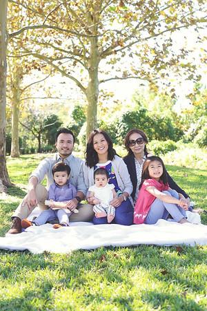 Pham-Nguyen Family 2015