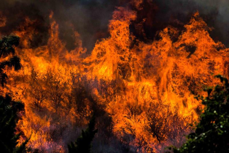 Camarillo Creek Fire (14).jpg