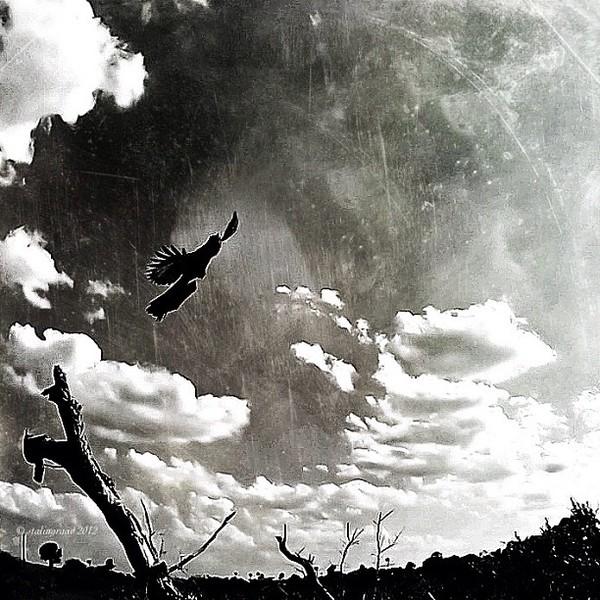 2012-03-07_1331163815.jpg