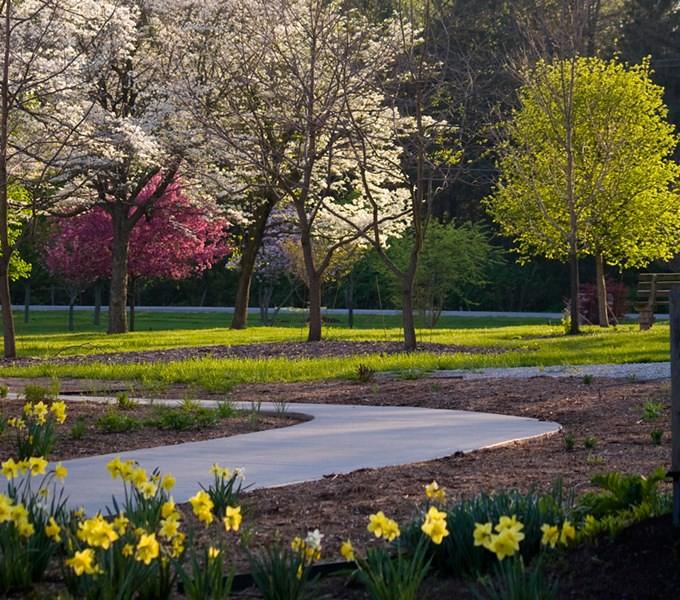 Urbana Meadowbrook Park