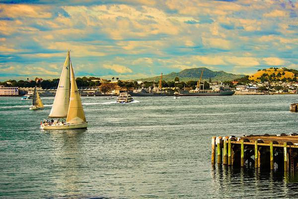 Auckland - 2014/16/17