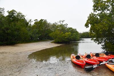 9AM Heart of Rookery Bay  Kayak Tour - Forster & DeLong
