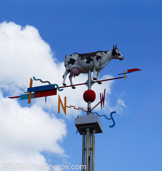 Sky Cow: A bizarre weather vane at a subway station near Boston. Happy Monday!  5/20/2013