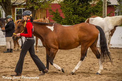 44th Stanbridge East Spring Festival Horse Show