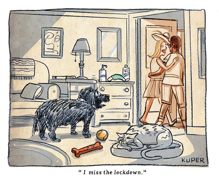Lockdown Dog.jpg
