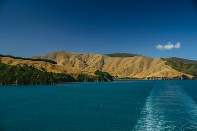 2015-03-09-New-Zealand-287.jpg