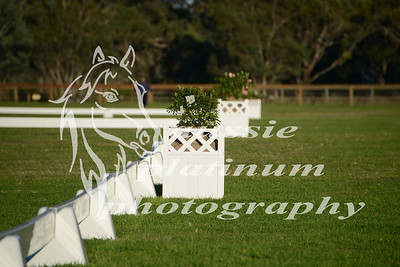 Class 1:  Leading Rein Pony